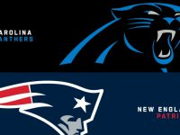 Carolina Panthers vs New England Patriots